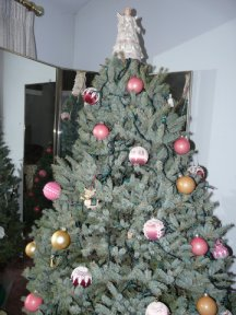 Our 2007 Christmas Tree